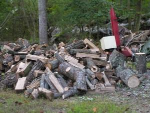 Firewood Processing Yard